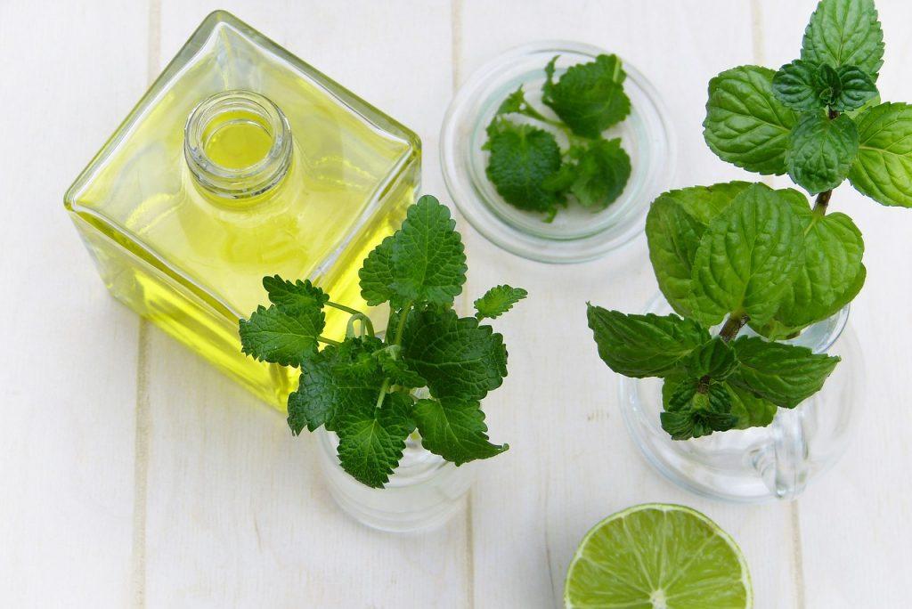 Jakie są właściwości oleju konopnego?